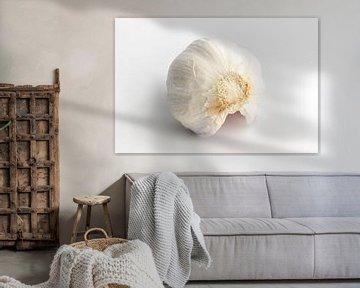 Knoflookbol op witte achtergrond van Edith Wijte