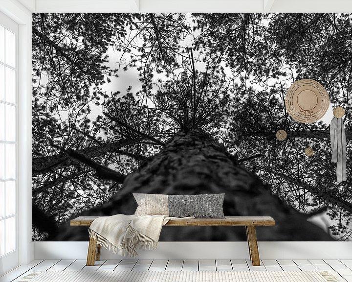 Beispiel fototapete: Baumwipfel von Martijn Tilroe