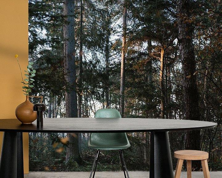 Sfeerimpressie behang: Ochtend licht in het bos van Wianda Bongen