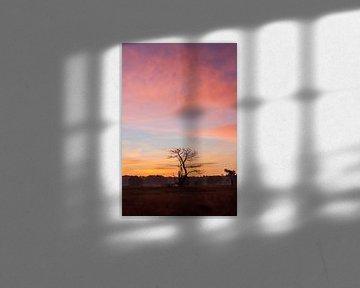 zonsopkomst van ton vogels