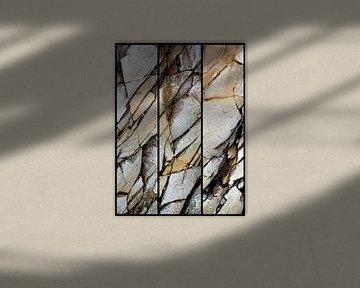 Die Natur als Künstlerin . minimalistisches Stilleben. von Saskia Dingemans