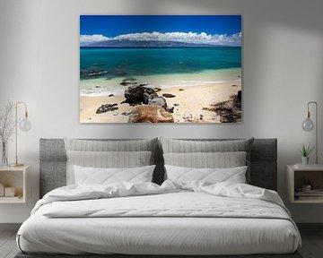 Molokai, Hawaii von Dirk Rüter