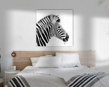 Zebra von Karsten van Dam
