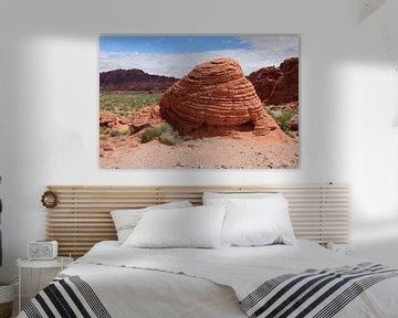 Beehive Rockformation im Valley of Fire, Nevada sur Christiane Schulze