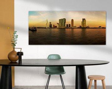 Rotterdam Skyline im Sonnenuntergang von Frank Herrmann