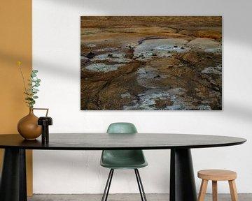 Geothermisch veld op IJsland van Anne Ponsen