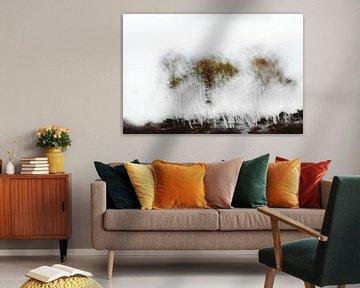 Arbres abstraits sur Ingrid Van Damme fotografie