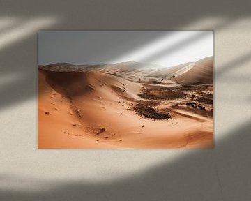 Morocco Desert van Robin