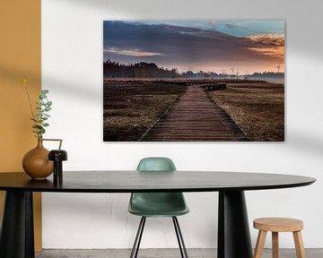 Follow the path van Kim van der Weerden