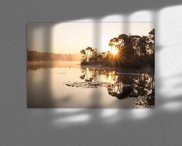 Sonnenaufgang von Kim van der Weerden