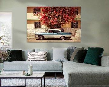 Chevrolet Bel Air 1958, onder de bougainvillea. van Jan de Vries