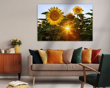 Zon en zonnebloemen van Daniela Beyer