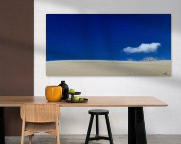 Dunes d'Egmond sur Nathalie Pol