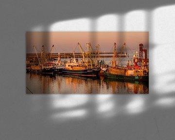 Hafen von peterheinspictures