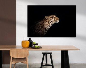 Leopardenporträt bei Nacht von Jos van Bommel