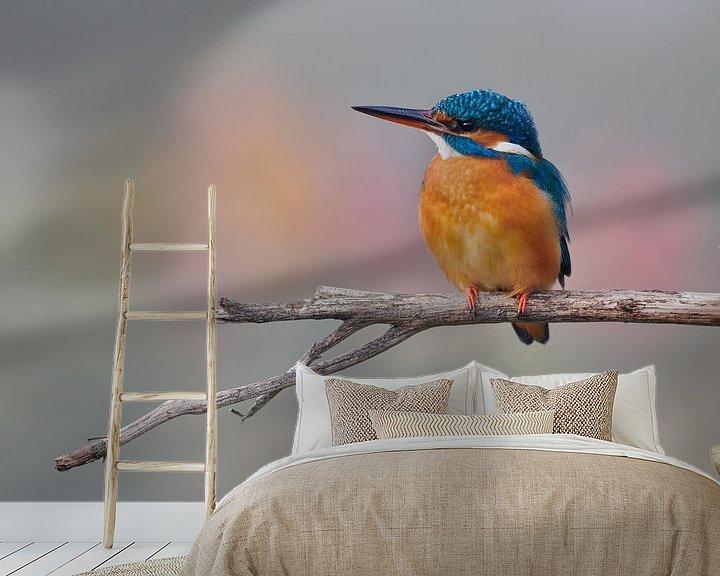 Sfeerimpressie behang: IJsvogel in mooie pastelkleuren van IJsvogels.nl - Corné van Oosterhout