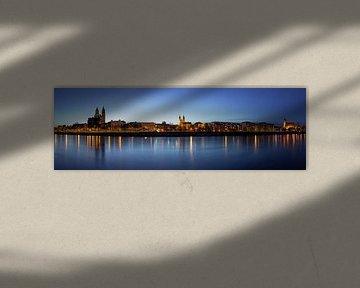Magdeburg Skyline Panorama zur blauen Stunde