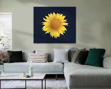 Sonnenblume von Oscuro design