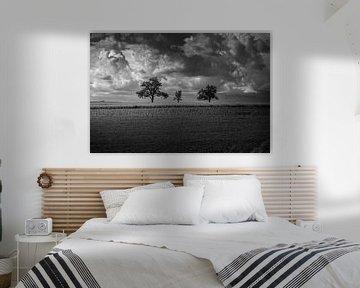Dramatische Wolken von Pitkovskiy Photography|ART
