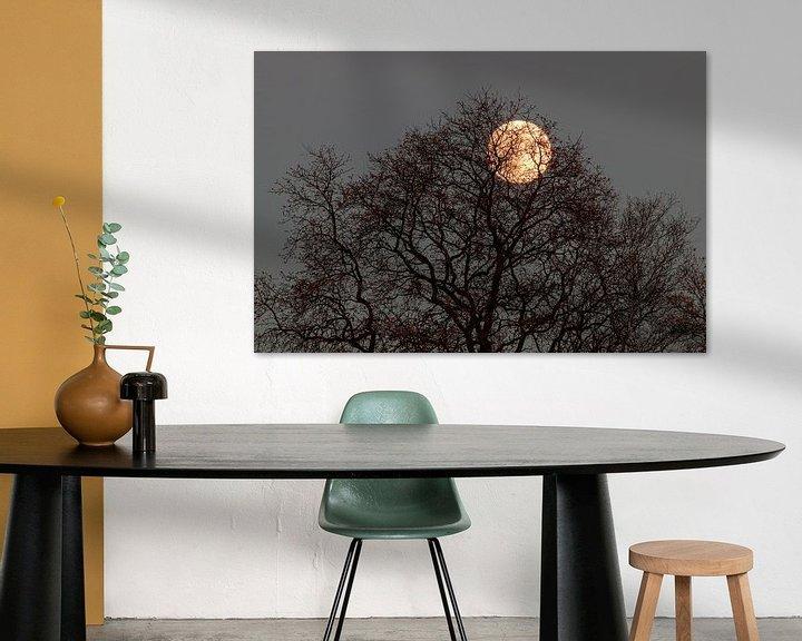 Beispiel: Der Mond durch den Baum. von Anjo ten Kate