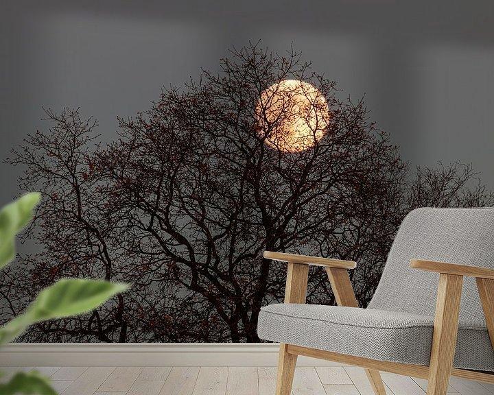 Beispiel fototapete: Der Mond durch den Baum. von Anjo ten Kate
