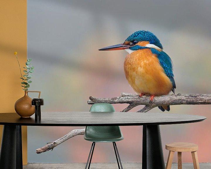 Beispiel fototapete: Eisvogel in Pastellfarben von IJsvogels.nl - Corné van Oosterhout