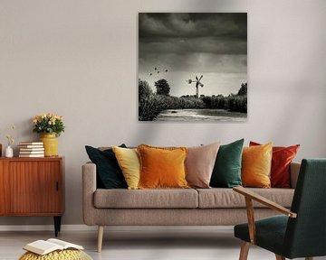 Driehuizen - Eilandspolder von Keesnan Dogger Fotografie