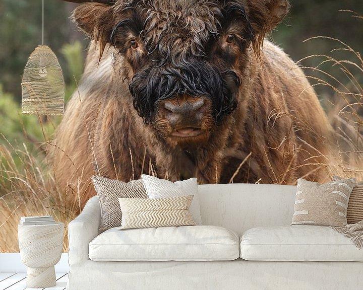 Sfeerimpressie behang: Schotse Hooglander stier van Menno Schaefer