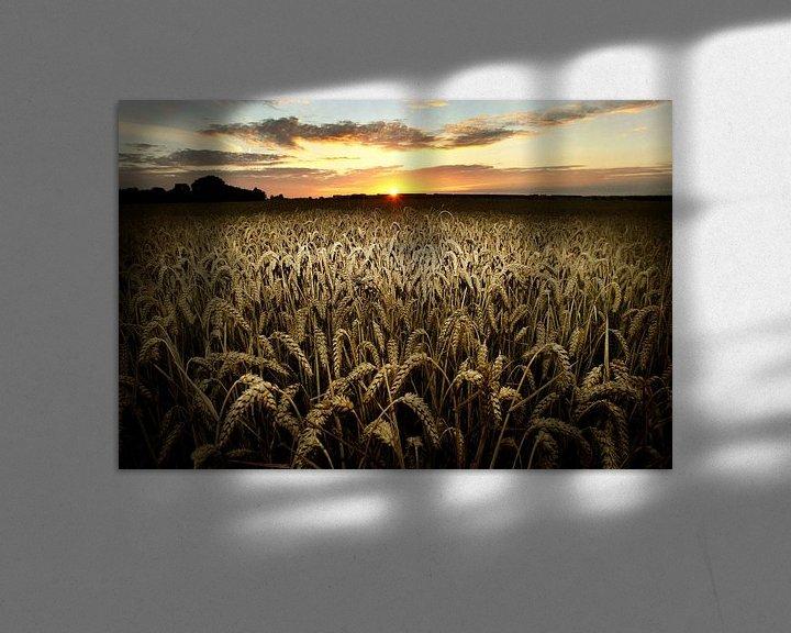 Sfeerimpressie: Tarweveld van Luuk van der Lee