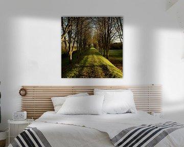Herfstsfeer in Flevoland van Rene  den Engelsman