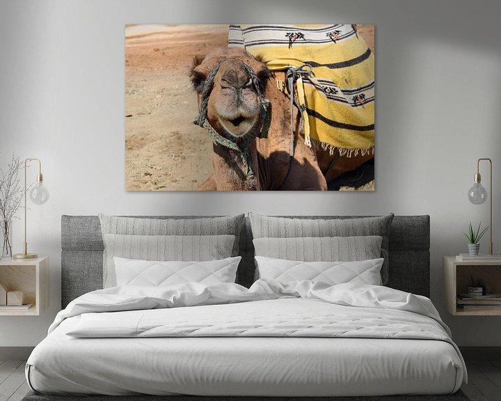 Beispiel: Niedliches Kamel von Sama Apkar