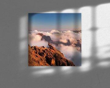 Vulkaanlandschap bij zonsondergang, La Palma, Canarische Eilanden, Spanje van Markus Lange