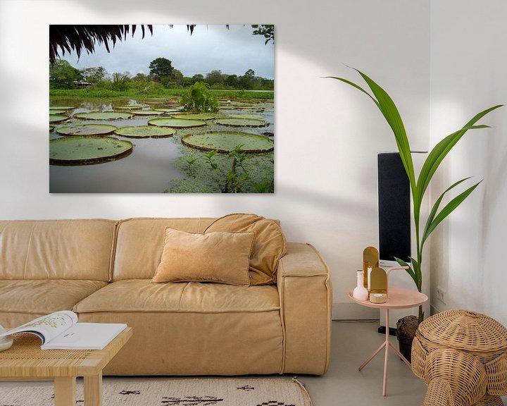 Impression: Lelies in de Amazone sur Max Davidse