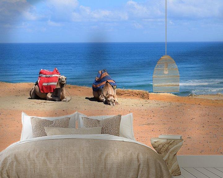 Beispiel fototapete: Liegende Kamele in der Wüste von Sama Apkar