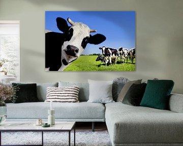 Vaches au pré sur Diana van Tankeren