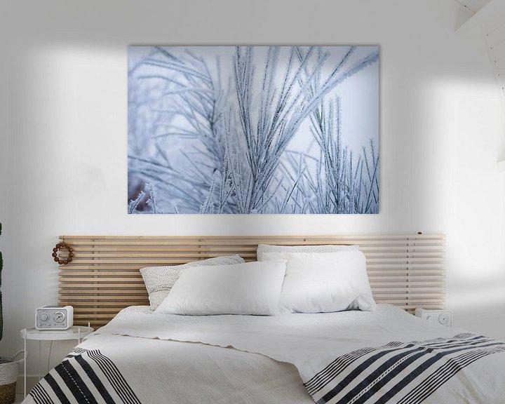 Sfeerimpressie: Witte wonderland, plantjes bedekt in een laagje sneeuw van Karijn   Fine art Natuur en Reis Fotografie