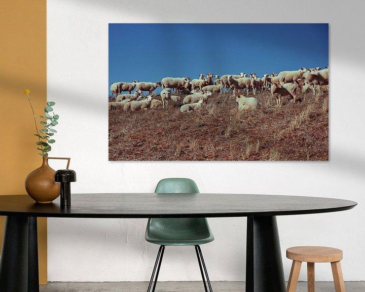 Beispiel: Schafe auf einer Düne von Bastiaan Schuit