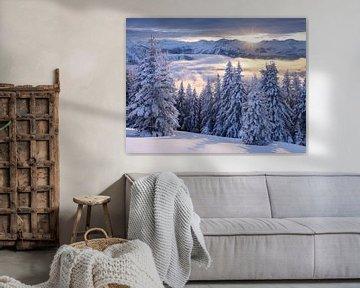 Alpendroom van Rainer Mirau