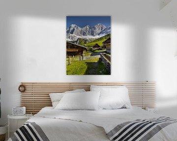 Alpenzomer IV van Rainer Mirau