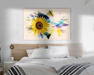 Sonnenblumenblüte ( Helianthus annuus ) vor einem farbenfrohen, künstlerisch abstrakten Hintergrund von Harry Adam