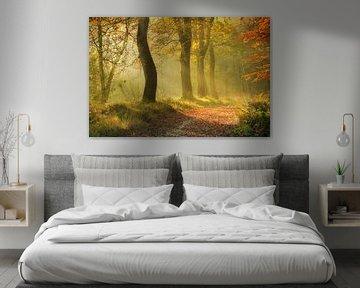 Herbstlicher Wald im Nebel von Peter Bolman