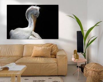 Pelikan von Liscia Beenhakker