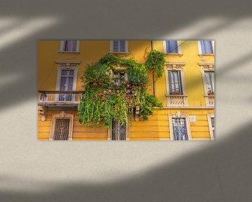 Pflanzen rund um den Balkon in Mailand, Italien von Jessica Lokker