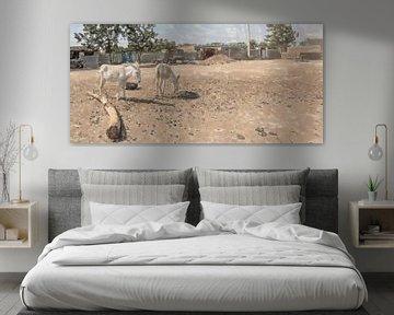 Dorfplatz mit Eseln im Sudan von Frank Heinz