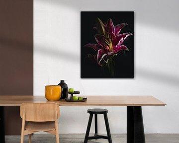 Elegant pink lilies van Sandra Hazes