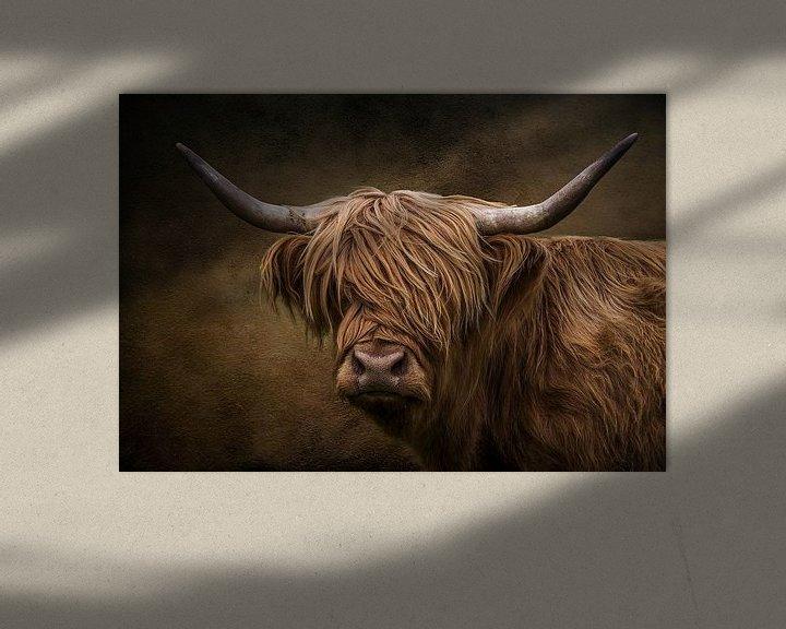 Sfeerimpressie: De Schotse hooglander van Bert Hooijer