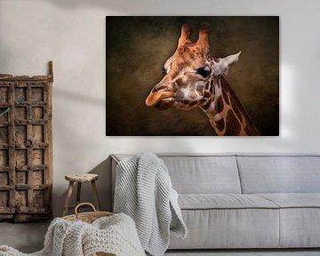 Die Giraffe von Bert Hooijer