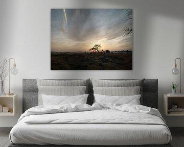 zonsopkomst op de hei van Maarten Lans
