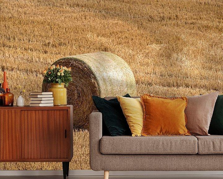 Beispiel fototapete: Gemähtes Kornfeld mit großen runden Heuballen in Reihen von Harry Adam