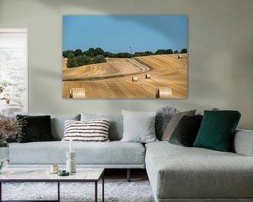 Gefreesd graanveld met grote ronde hooibalen met een weg op de achtergrond van Harry Adam